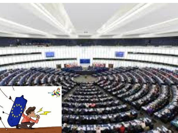 EU WHISTLE 2